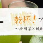 【イベント告知】きっとお茶割りが好きになる。